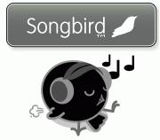 Songbird black bird