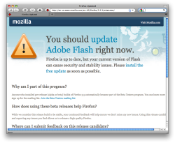 Firefox's Flash Warning