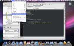 MonoDevelop 2.2 beta 1 on Mac OS X