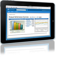 Mobile Business Intelligence
