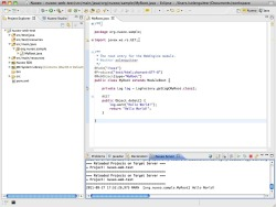 Nuxeo IDE in action