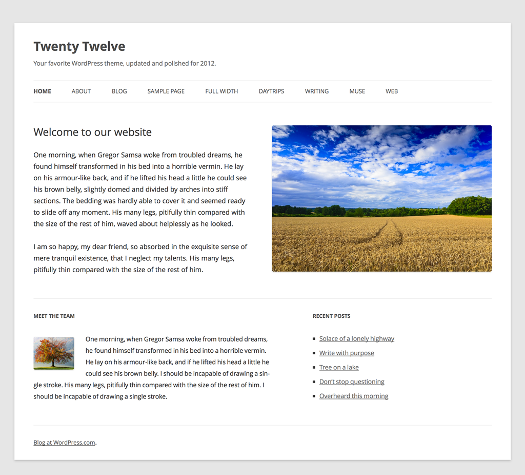 The Twenty Twelve theme