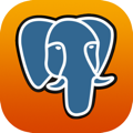 PostgreSQL security icon